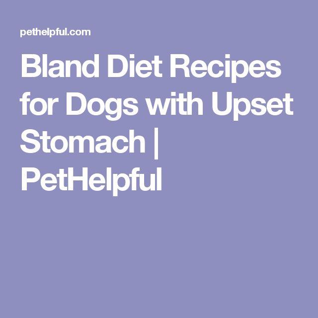 Bland Puppy Food Recipe