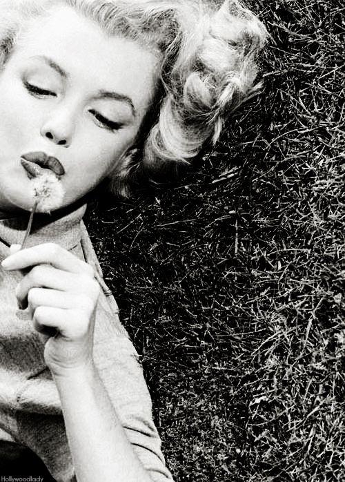 Marilyn Monroe #monroe #actress