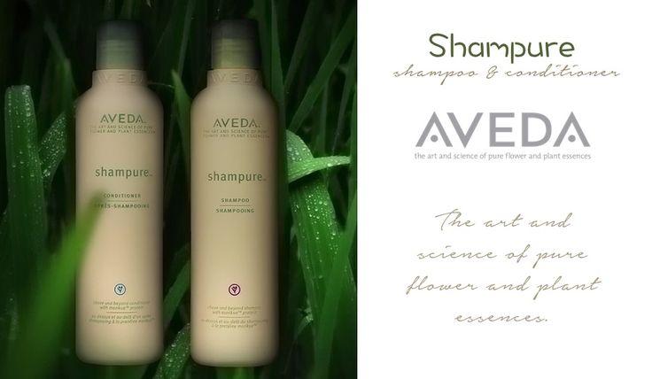 Pure #healthy #hair  http://en.sereni.net/aveda-en/shampure-en.html Per #lavaggifrequenti. A base di proteina morikue, garantisce pulizia e protezione giornaliera.  #capelli #bellezza