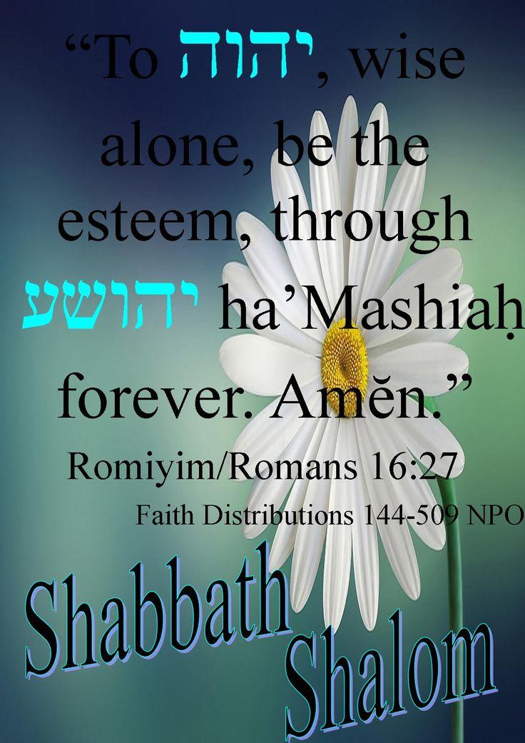 Shabbath Shalom! All esteem to Abba YAHWEH! Our tiqvah Ahmein