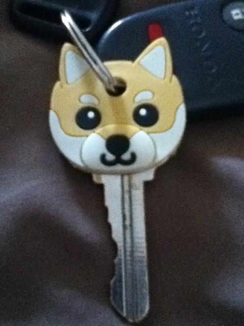shiba key cover