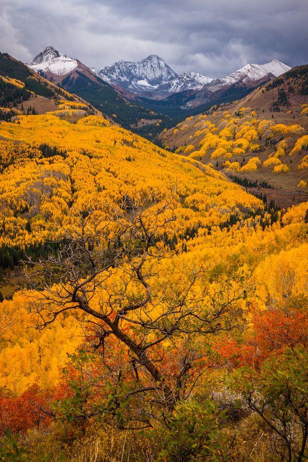 The Rockies, Colorado, United States.