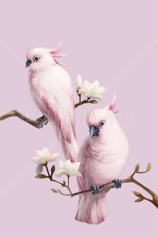 Pink Birds Perching on Magnolia