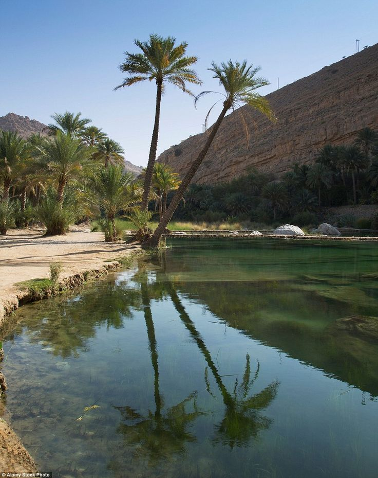 The Wadi Bani Khalid (above) is an oasis in the desert and is filled with huge amounts of ...