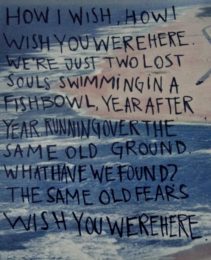 My favorite lyric: We're just two lost souls, swimming in a fish bowl. Year after year...