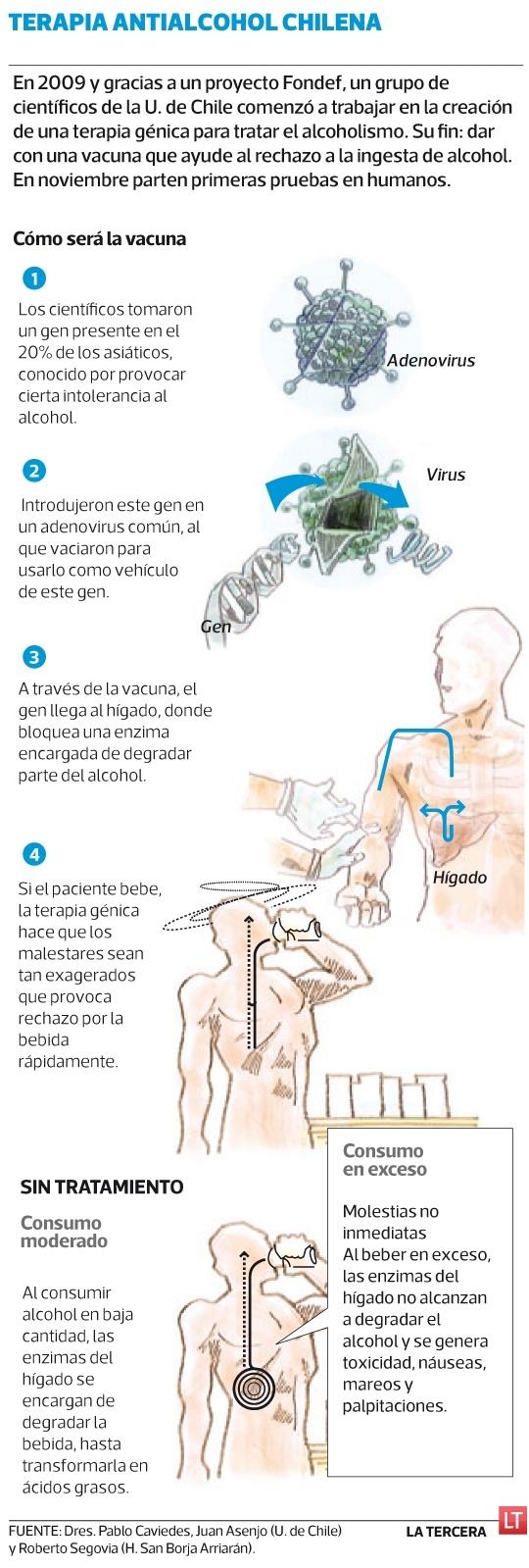En noviembre se probará en chilenos la primera vacuna que incrementa malestares físicos cada vez que se bebe alcohol. La terapia que intenta evitar el alcoholismo fue desarrollada por científicos de la U. de Chile y una dosis es efectiva por un año.