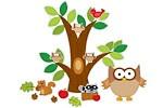 owl theme classroom?