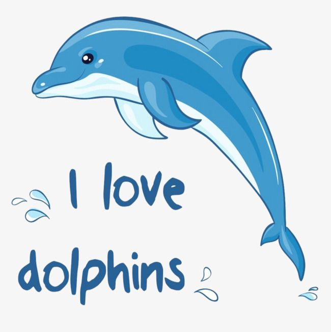 Dolphin English Dolphins Dolphin Art Dolphin Painting