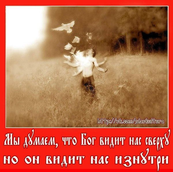 2364604740.jpg — Яндекс.Диск