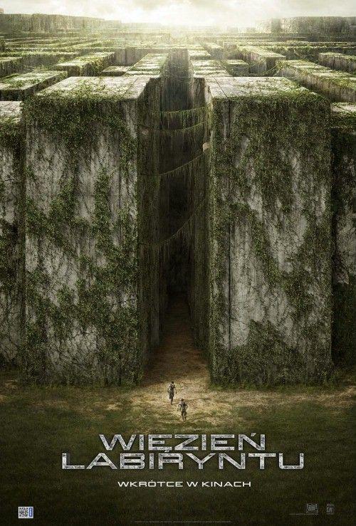 Więzień labiryntu / The Maze Runner (2014) Napisy Filmy online oraz seriale w niezliczonej ilości za darmo - zobaczto.tv