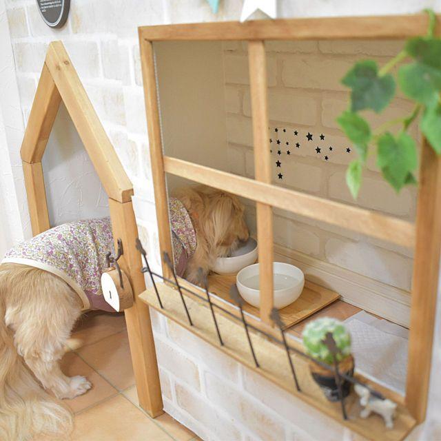 棚 いぬと暮らす ペット Diy いぬ などのインテリア実例 2019 02 07 19 56 31 Roomclip ルームクリップ 犬の家具 犬の部屋 犬小屋のデザイン