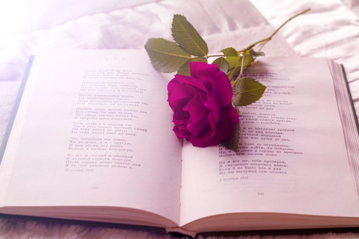 книга с розой, романтика, винтаж, стихи