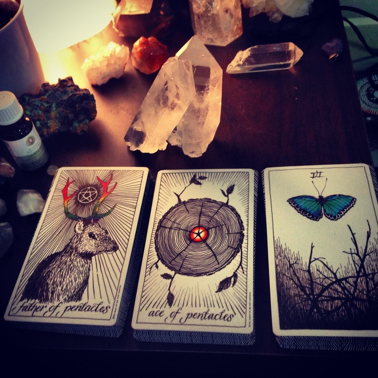 More from the Wild Unknown Tarot deck.  Gorgeous deck.