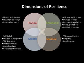 Resilience, Mental Resilience, Emotional Resilience, Physical Resilience | Beyond The Barriers