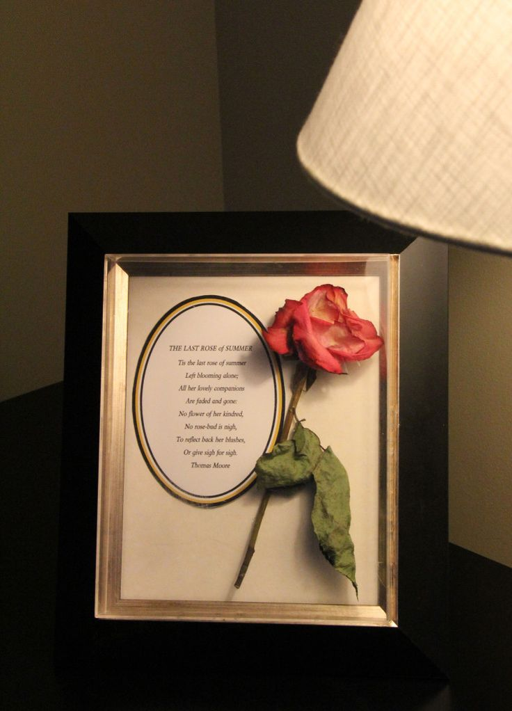 "Don't let the last rose of summer fade and die in your garden. Click on to learn how to preserve your flowers and turn them into beautiful keepsakes, like this framed poem. What poem? Why, ""The Last Rose of Summer,"" of course."