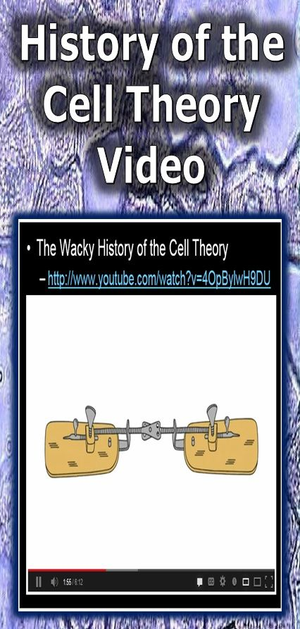This is a nice video that helps explain the wacky history of the cell theory by…