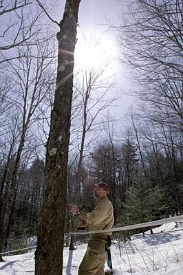 Maple sugaring in the Northeast. Full story: http://www.csmonitor.com/The-Culture/Food/Stir-It-Up/2012/0323/Maple-sugaring-New-England-s-cherished-spring-tradition