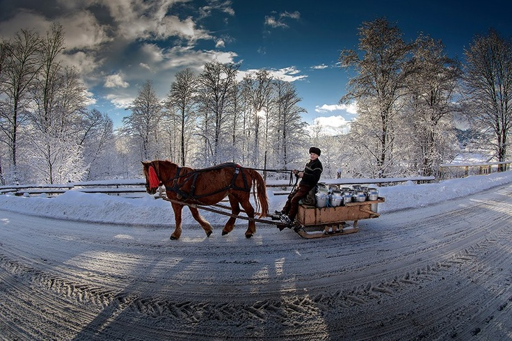 Winter in Romania by Sorin Onisor