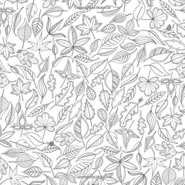 Leaves Secret Garden An Inky Treasure Hunt And Coloring Book By Johanna Basford