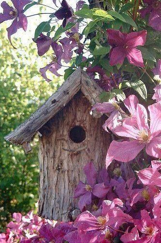 Birdhouse and clematis - beautiful !