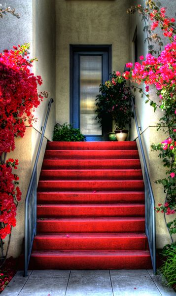 Colorful stairs framed with Bougainvillea in Little Italy located in San Diego California. Photo by Paul Koester.