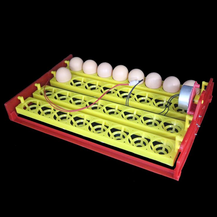 32 Eggs Turn Tray Automatic Incubator Egg Tray 110v / 220v / 12v Chicken Duck Eggs Tray 28 X 43 cm 8 Holes