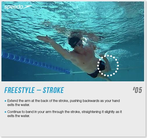 64 best images about swimming technique tips on pinterest for Fish swimming backwards