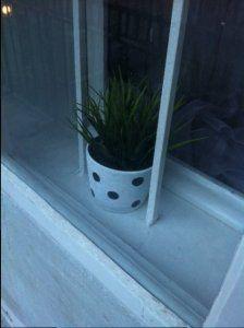 DIY polka dot pot http://ladiy.cafeblog.hu/ #diy #polkadot #flower #vase #pot #inspiration
