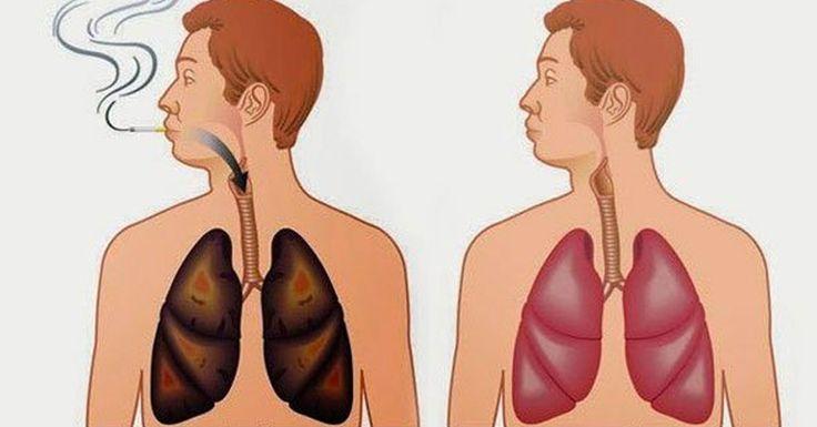 Ces aliments vous aideront si vous fumez ou avez arrêter de fumer!