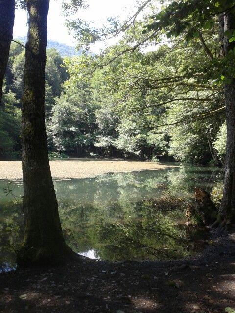Yedi göller