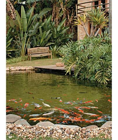 Você já deve ter visto lagos artificiais com a água esverdeada, o que torn...