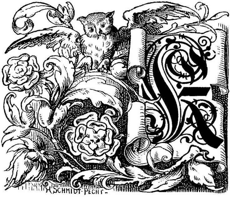 """Decorative initial """"K"""" on scroll with owl and roses Goethe's Works [Goethes Werke] (1882). This ornamental letter """"K"""" was used as an 8-line drop cap initial. It features an owl, two rose flowers, leaves, and a German Fraktur letter """"K"""" on a sc"""