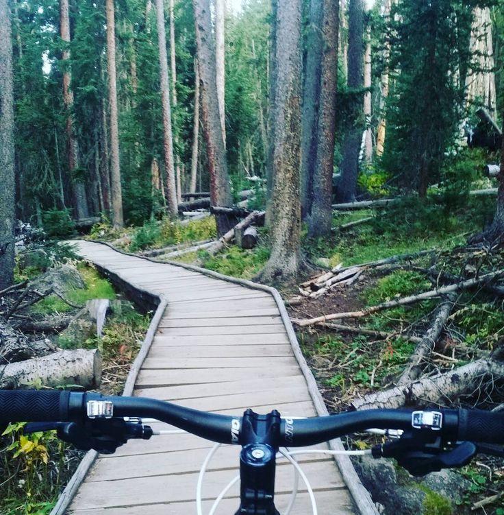 Evening bike ride. Last of the summer green. #MtnBike #MtnLife  #lifeisgood
