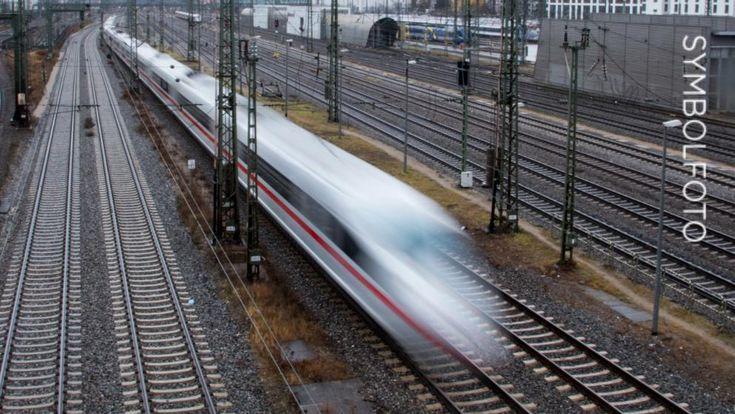 ICE-Strecke Hamburg-Berlin vorübergehend gesperrt: Zug prallt auf Hirsch