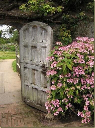 Lovely weathered door