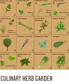Guides for growing different types of gardens (Culinary Herb Garden, Salad Garden, Beginner's Garden).  Via Agrarian at Williams-Sonoma.