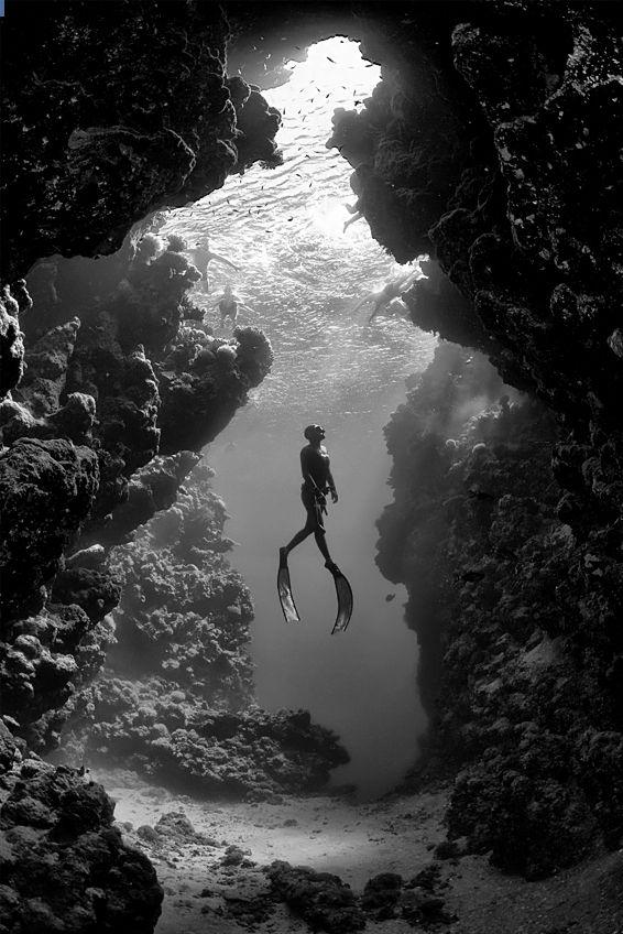 *Dive in the tropics