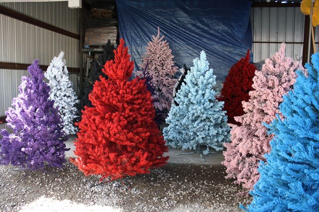 6 Non-Traditional Christmas Tree Ideas - Airtasker Blog