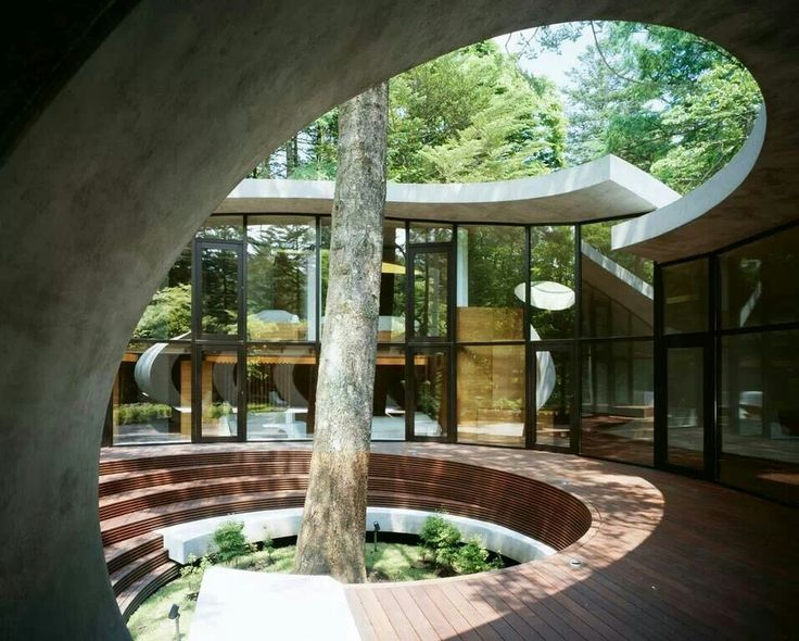 House centred around a tree, like courtyard for glass block house