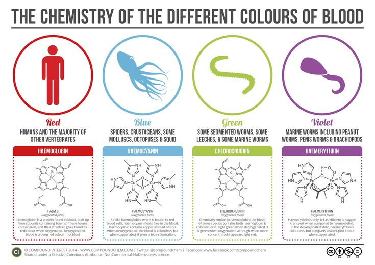 Learn about the chemistry behind the different colors of blood!