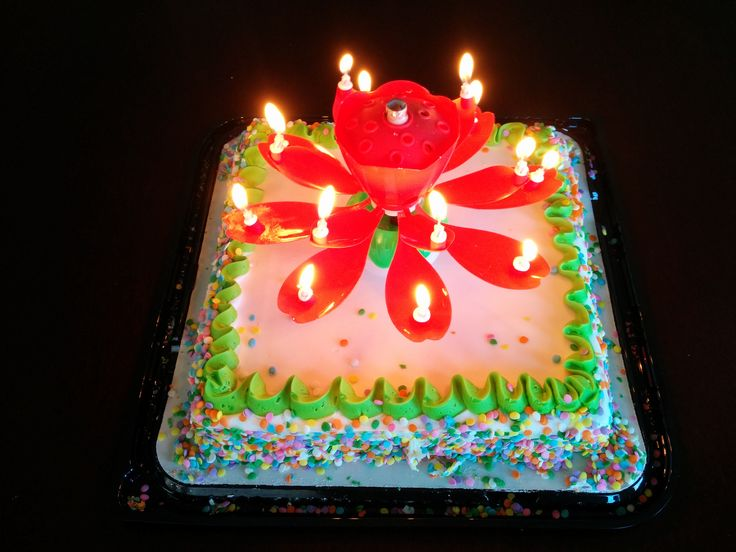 14 best Lotus Candles Pictures images on Pinterest Birthday