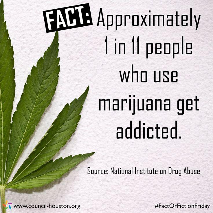 drug rehab statistics
