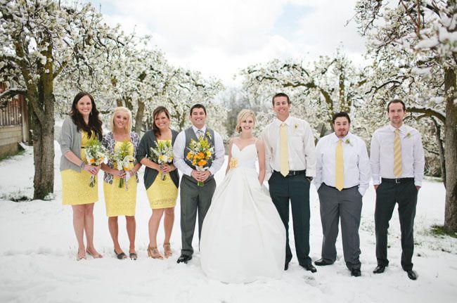 gele stropdassen en grijs