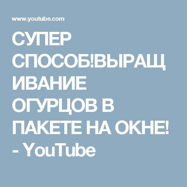 СУПЕР СПОСОБ!ВЫРАЩИВАНИЕ ОГУРЦОВ В ПАКЕТЕ НА ОКНЕ! - YouTube