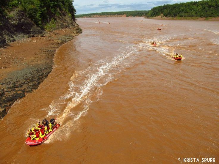 Shubenacadie River tidal bore rafting, uniquely Nova Scotian