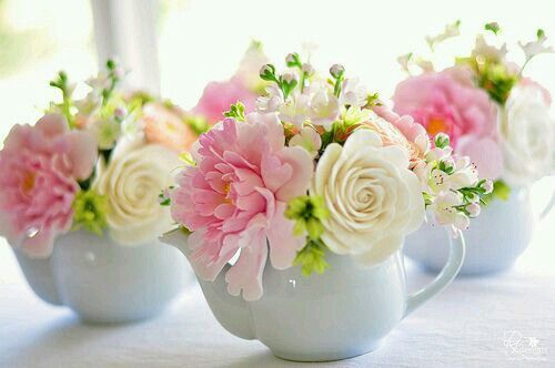 Flowers in a cups