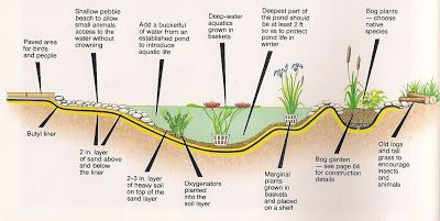 Permaculture Pond - How to build a pond