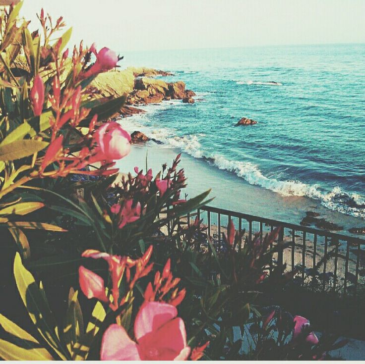 let the sea set you free ∆∆ //