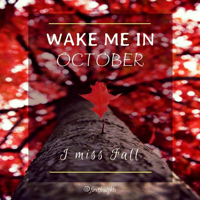 #Sleepingin until #fall.  #autumn #summer #spring #winter #seasons #quote #whenseptemberends #imissfall #home #october #firstfruights #nostalgia #nature #weather #graphicart #colorful #photography #beautiful #sleep