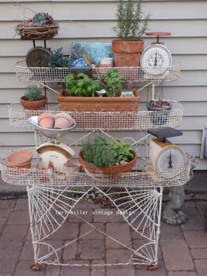 Plant Stands Display And Herbs Garden On Pinterest